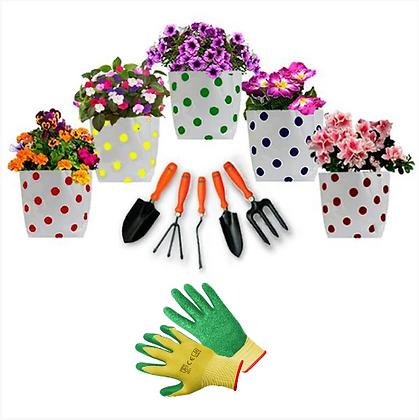 Grow Bag and Garden Tools kit