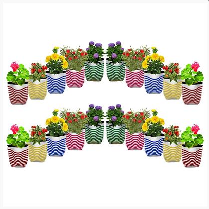 Premium Colorful Stripe Grow Bag - Set of 20