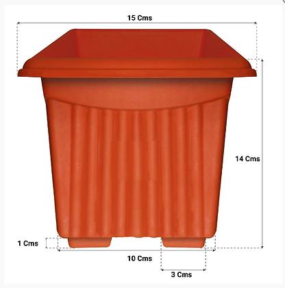 UV Treated Square Plastic Planter (6 inches)