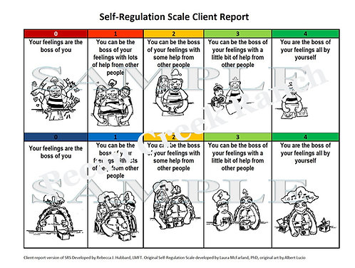 Self-Regulation Scale Client Report