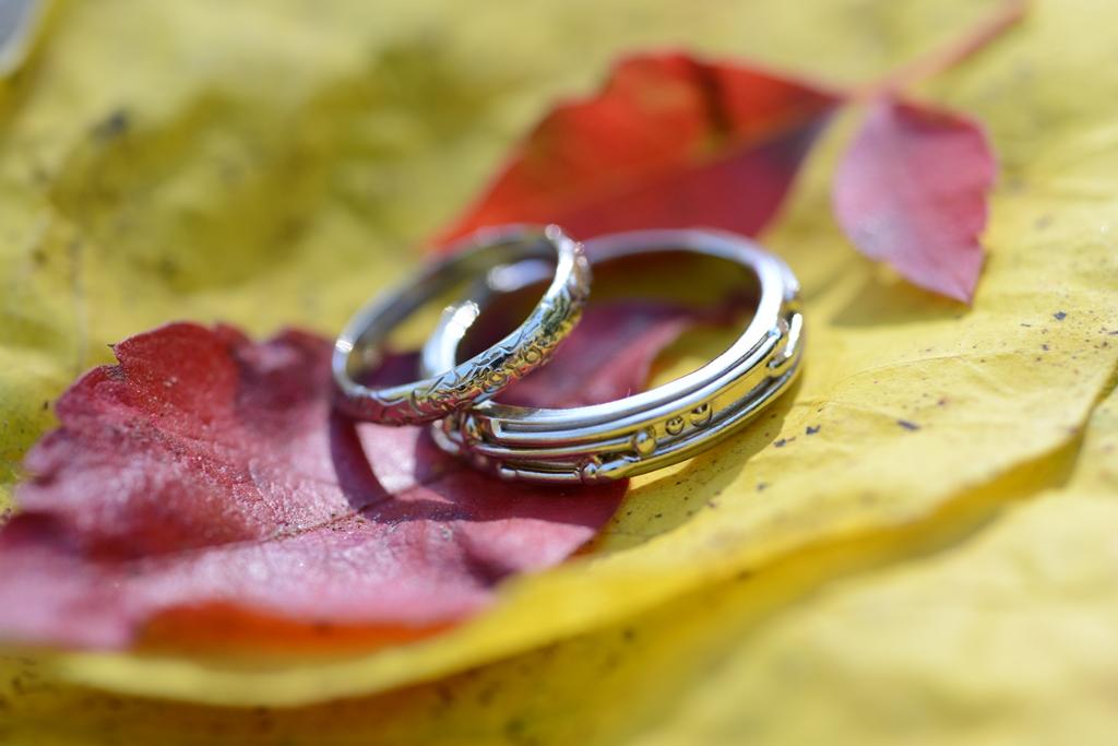 Rings_web
