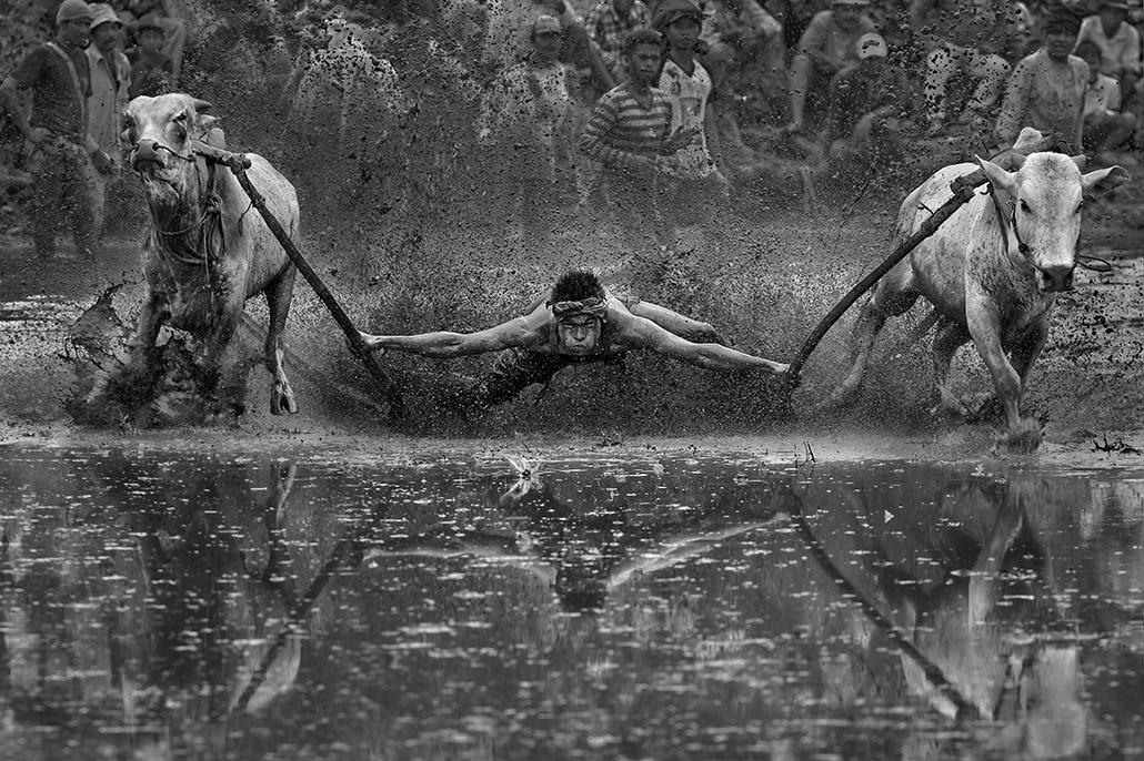 Pacu Jawi ~ 73.jpg