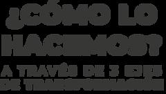 Copia de COMO-LO-HACEMOS-1.png