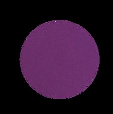 circulo2.png