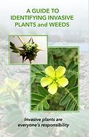 Invasive plant guide