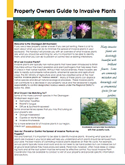 Property Owner Guide to Invasive Plants