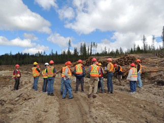 Forestry Day Carmi