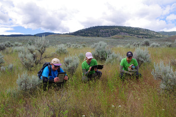 Terrestrial team at White Lake