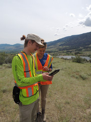 Tess and Roanan doing inventory at Oliver Mountain