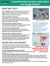 Invasive Mussel FAQ