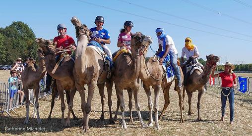 Course chameaux 2019-31.jpg