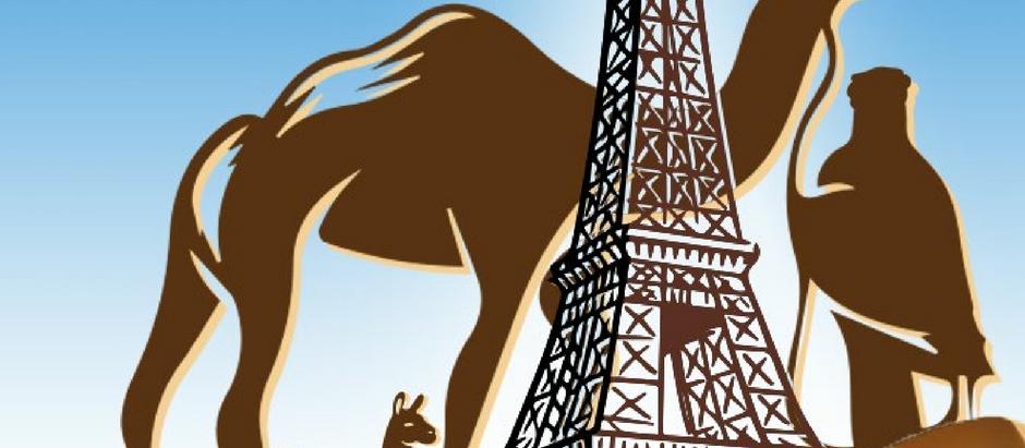 Premier salon international du dromadaire et des camélidés de France les 14 et 15 septembre 2019