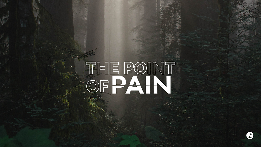 the point of pain title.png
