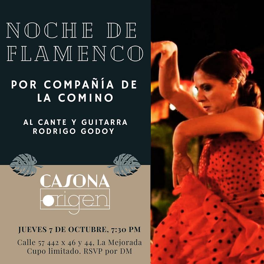 Noche de Flamenco por Compañía de La Comino