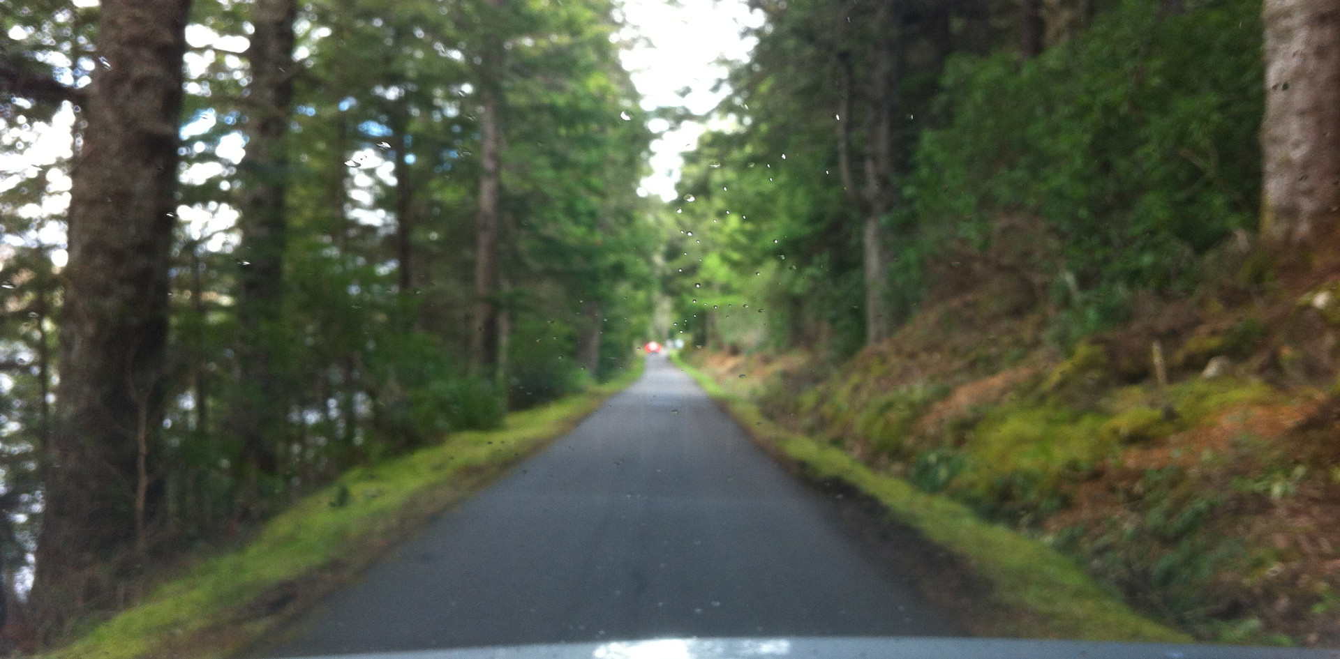 on the drive to Dunrobin castle