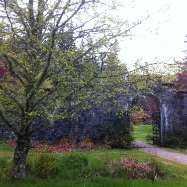 the garden at Ardverkie House