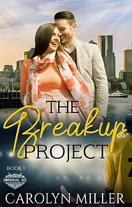 The Breakup Project Christian hockey romance series