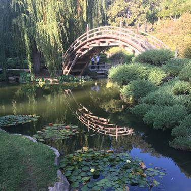 Huntington Botanical Gardens, LA, USA