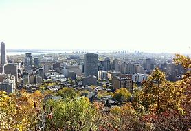 romance set in Montreal