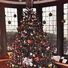 LCOS Xmas Tree.jpg