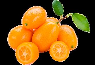 kumquats1.png
