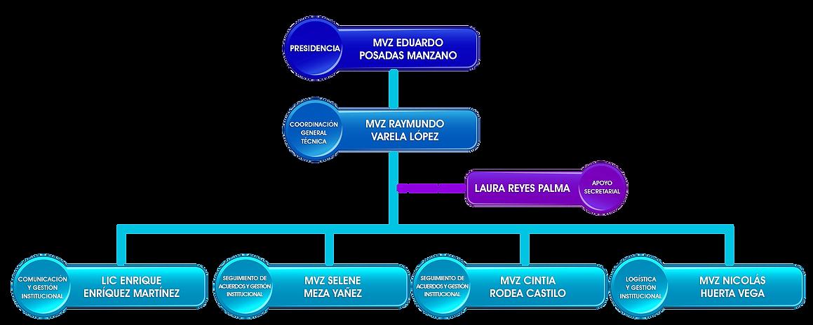 ORGANIGRAMA 2020.png