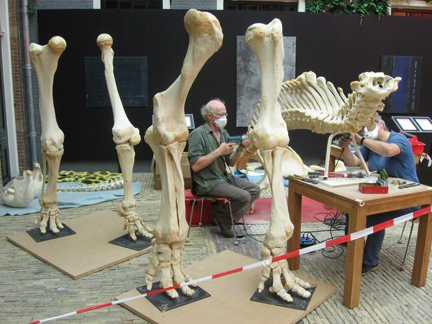 chris tussen grote botten