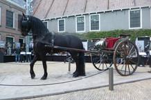 fries paard sjees