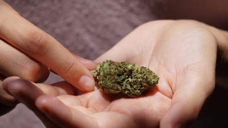 How Can Medical Marijuana Help You?