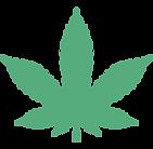 Marijuana Cannabis OMMA.png