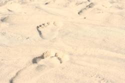 beach-863697