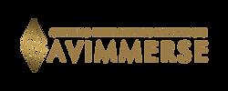 AVimmerse_Website_logo.png