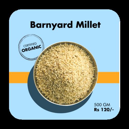 Barnyard Millet (Sawaan)
