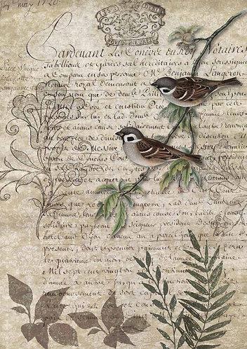 Decoupage Queen® Decoupage Paper -Birds on a Branch
