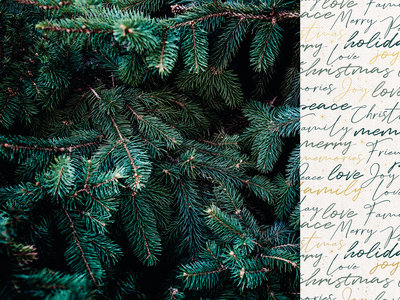Emerald Eve 12x12 Scrapbook Paper - EVERGREEN