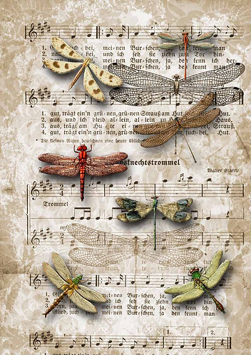 Decoupage Queen® Decoupage Paper - Dragonflies on Sheet Music