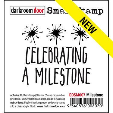 Darkroom Door Small Stamp - Milestone