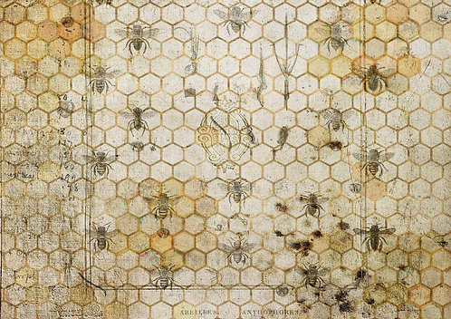 Decoupage Queen® Decoupage Paper -The Honeycomb