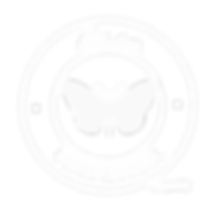 lissa logo.png