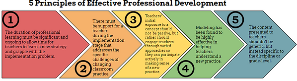 5 principles of effective professional d