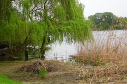 Castellaro Lagusello: the lake
