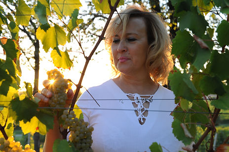 Cadore Winery owner