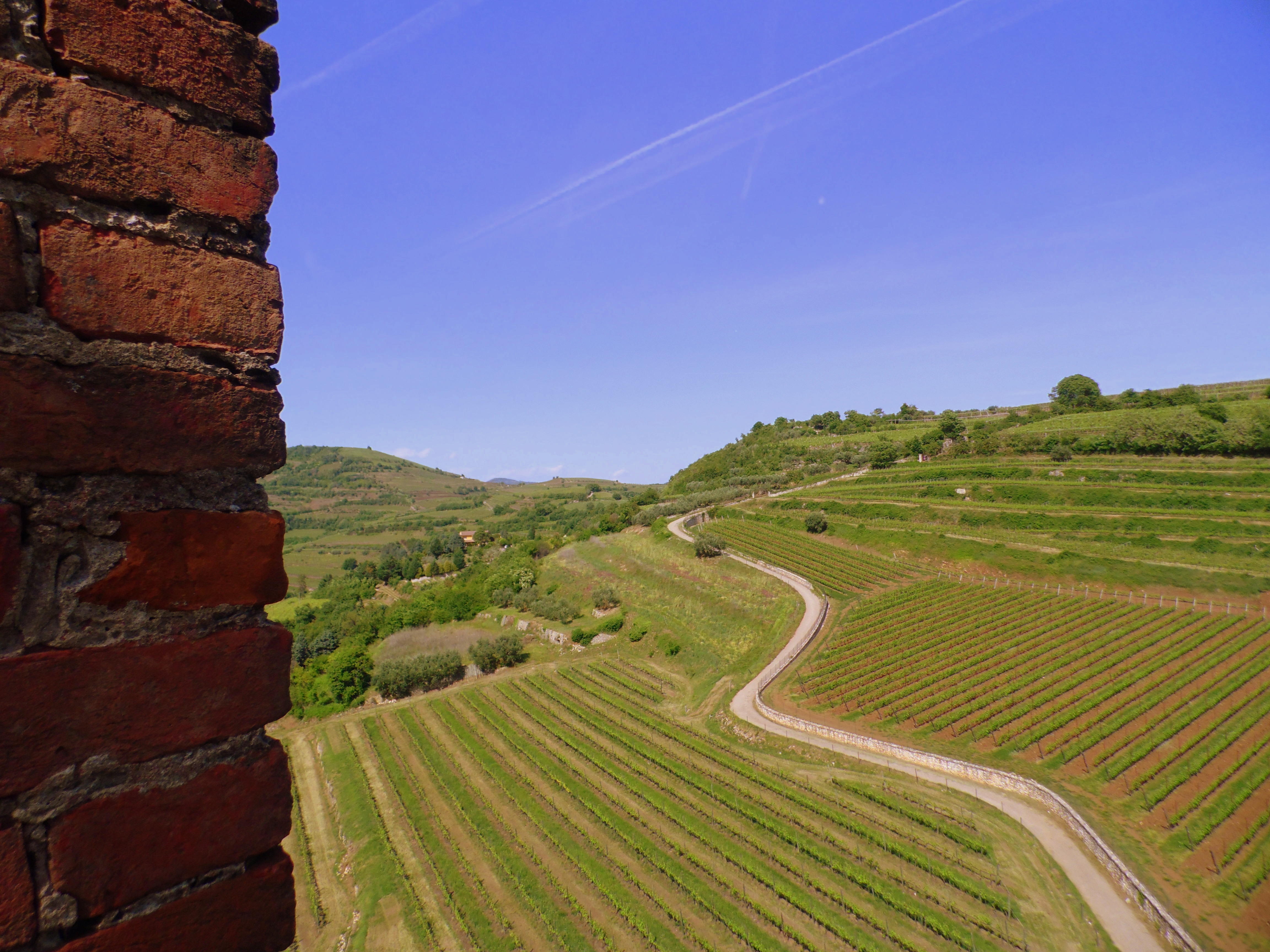 From Soave Castle: what a view!