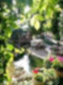 pond%203_edited.jpg