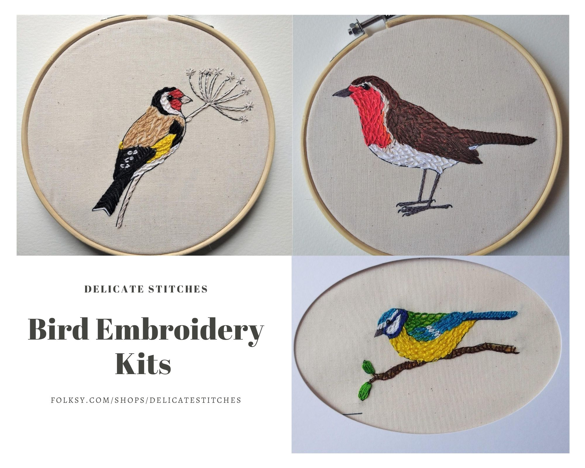 Bird Embroidery Kits
