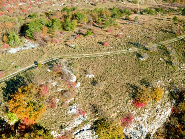Autumn on the Karst ridge