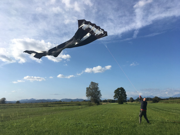 And Now for Something Completely Different - A Giant Show Kite