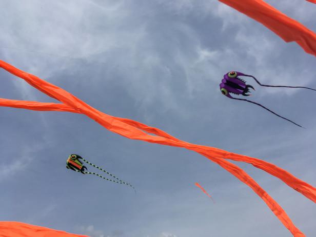 Kites Up! - IKF Vrhnika 2021