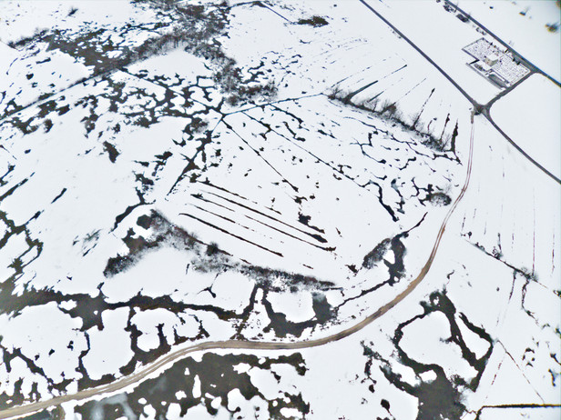 Patterns in the snow