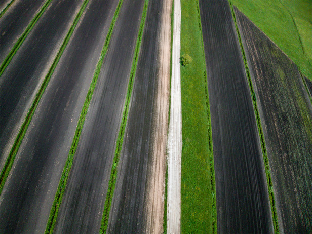 The Black Soil of Ljubljana Marshes and the Treasures Beneath